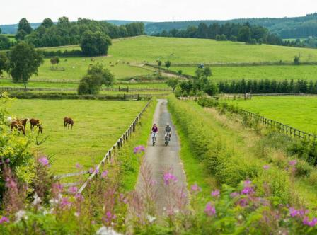 Cycling the Vennbahn, an easy ride on one of Europe